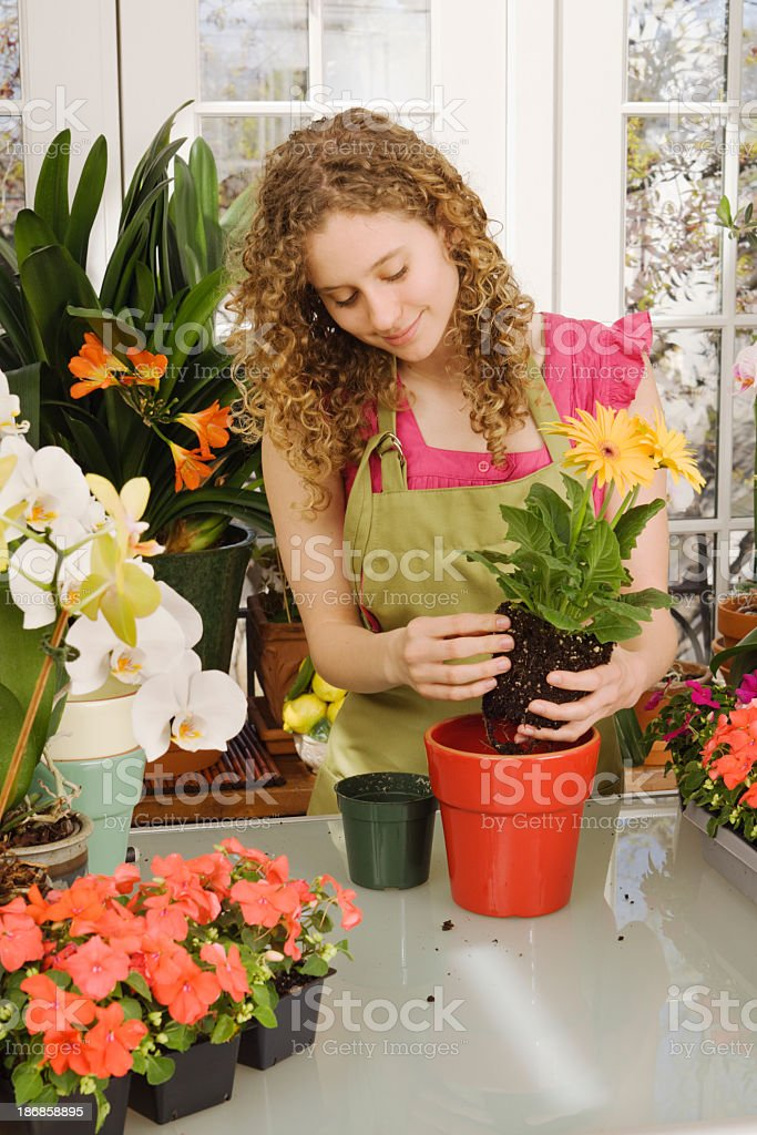 Small Business Owner, Floris in Flower Shop with Potted Plant royalty-free stock photo