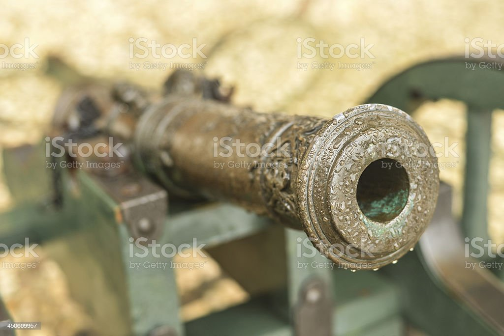 Small Cannon at Arkhangelskoye Palace, Russia stock photo