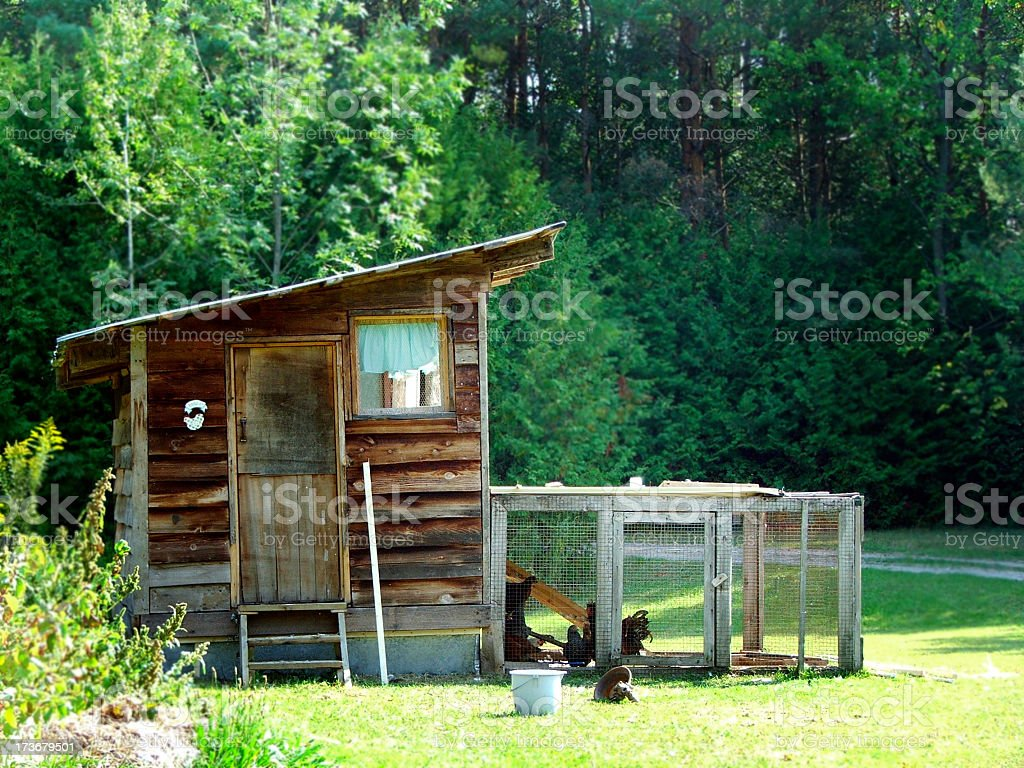 Small chicken coop in the countryside next to a wooden house stock photo