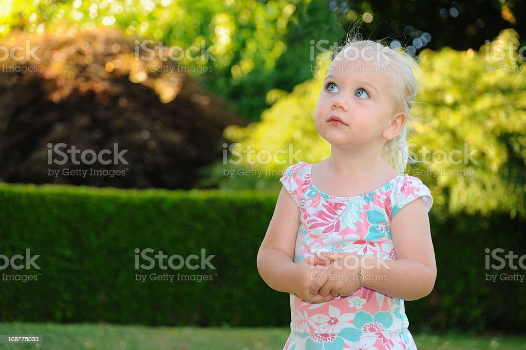Small Child Looking royalty-free stock photo