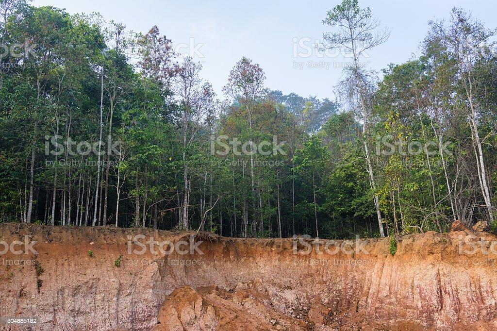 Petite falaise dans la forêt causés par le glissement de terrain photo libre de droits