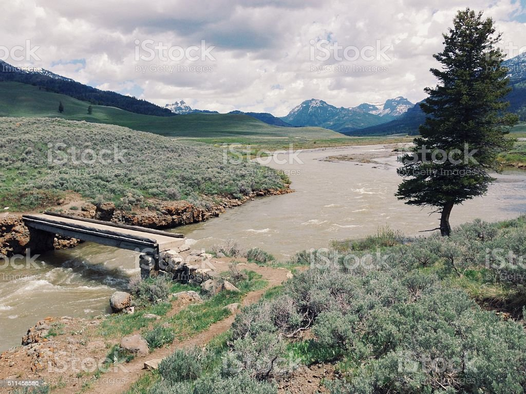Small Creek Bridge royalty-free stock photo
