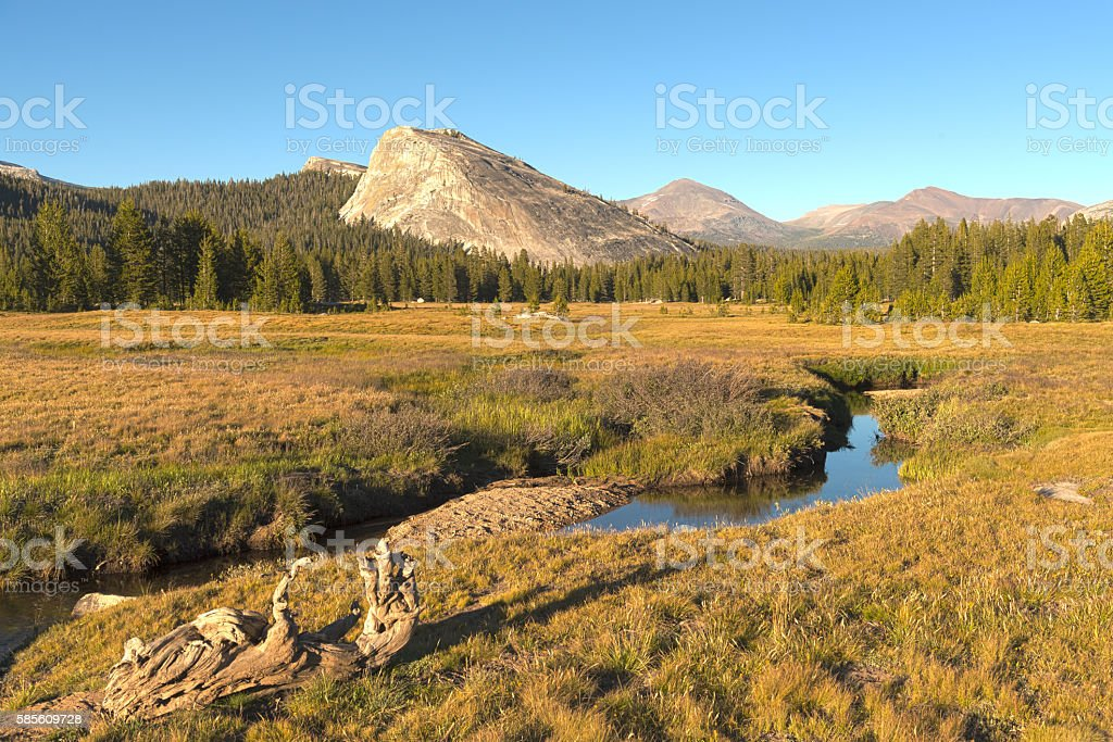 Small Creek in Tuolumne Meadows at Sunset stock photo