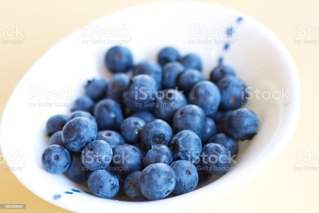 Small Cute Bowl of Fresh Blueberries stock photo