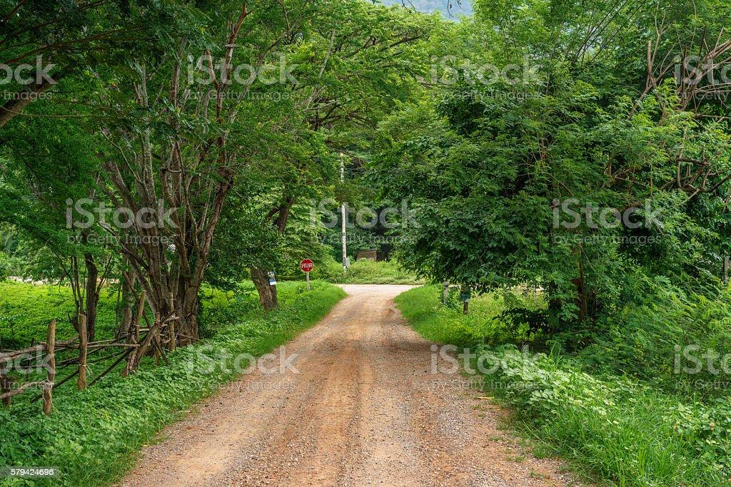 Small dirt road in rural farming village photo libre de droits