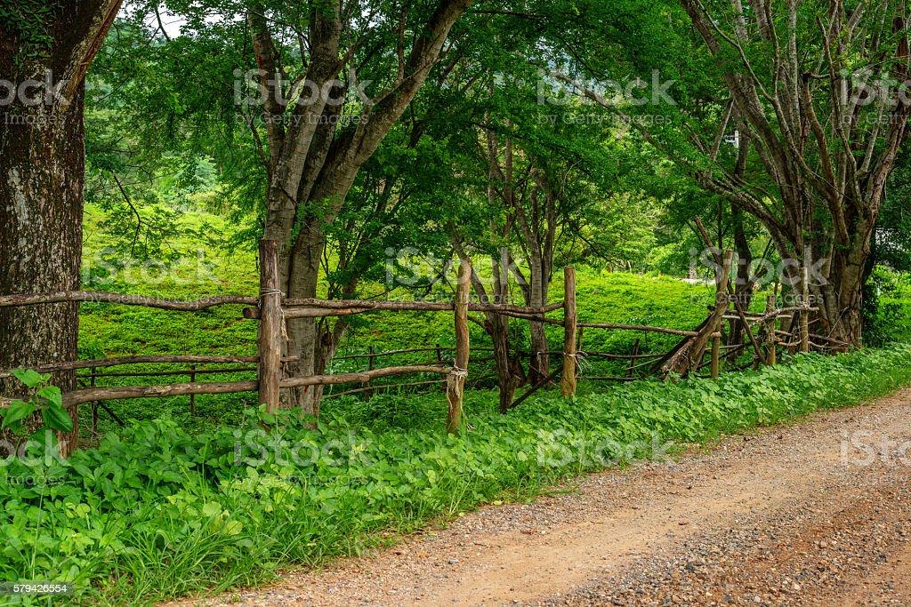 Small dirt road in rural village photo libre de droits
