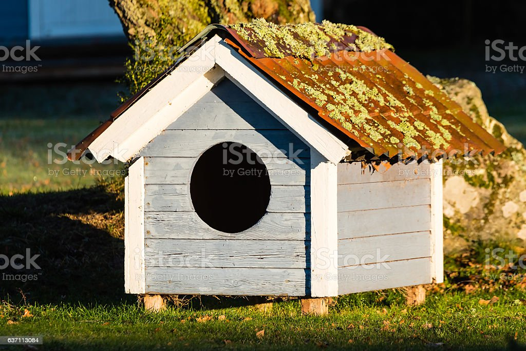 Small doghouse with lichen on roof stock photo