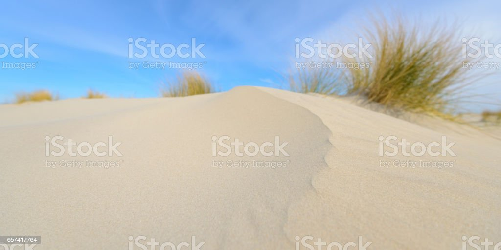 Small dunes at the beach during a beautiful spring day stock photo
