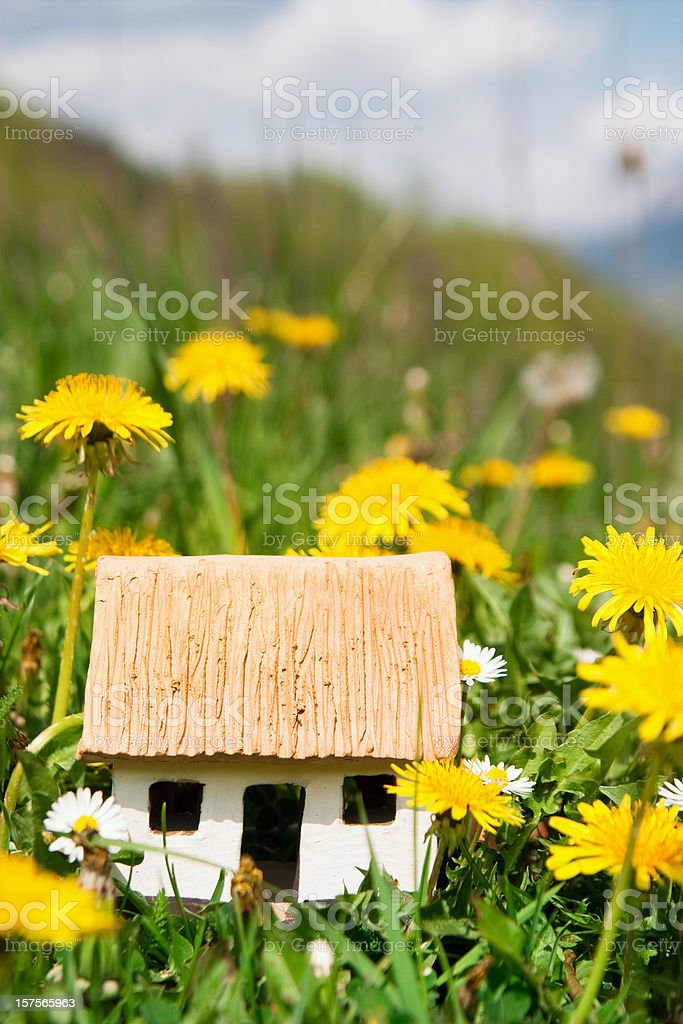 Small eco house in the green grass royalty-free stock photo