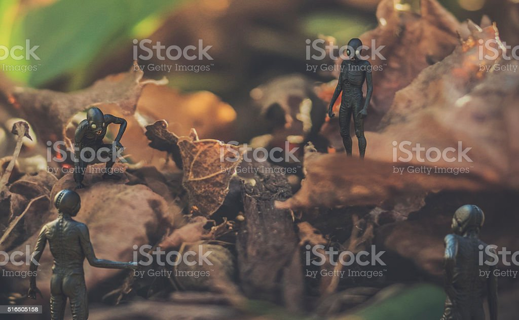 Small fantasy creatures in nature stock photo