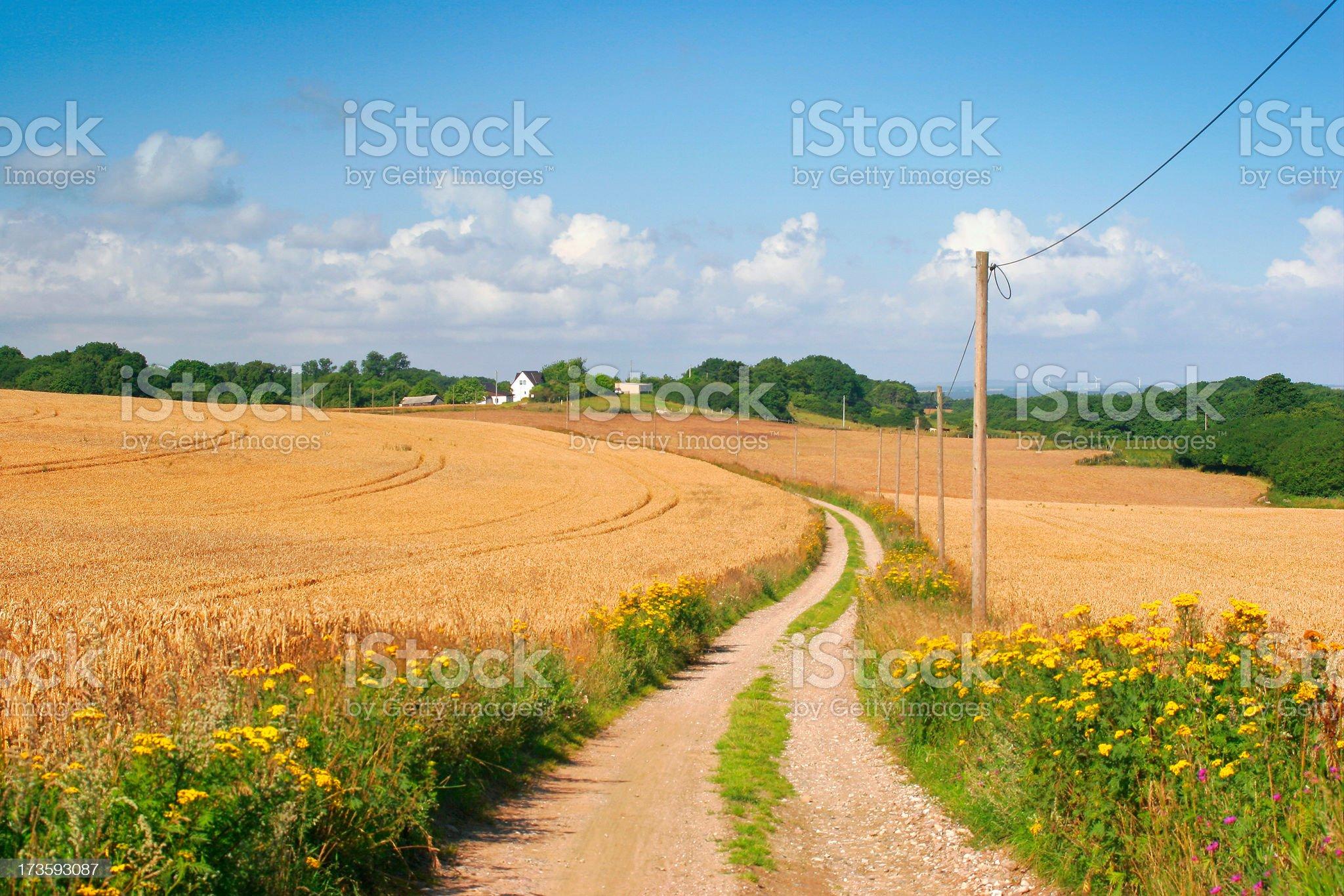 Small Farm Road royalty-free stock photo