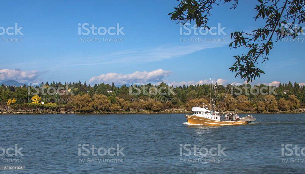 Small fishing seiner goes along the river stock photo