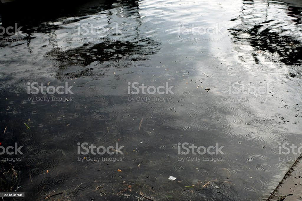 small fishunder the water surface stock photo