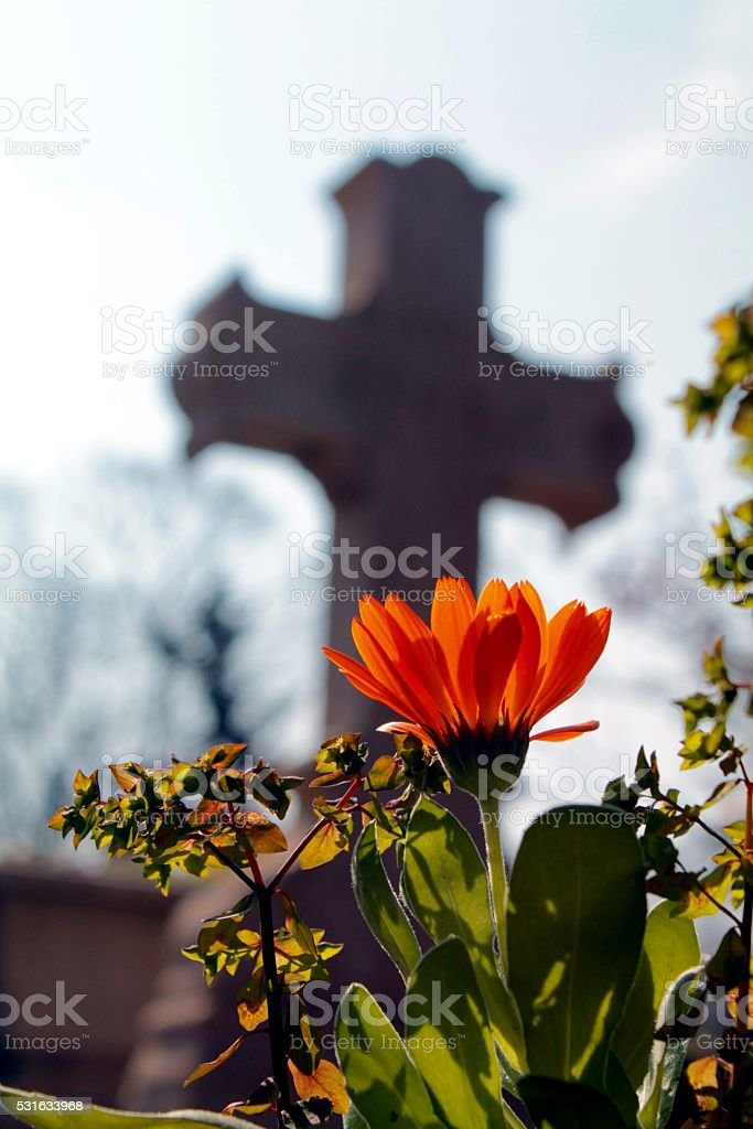 Small flower before the cross stock photo