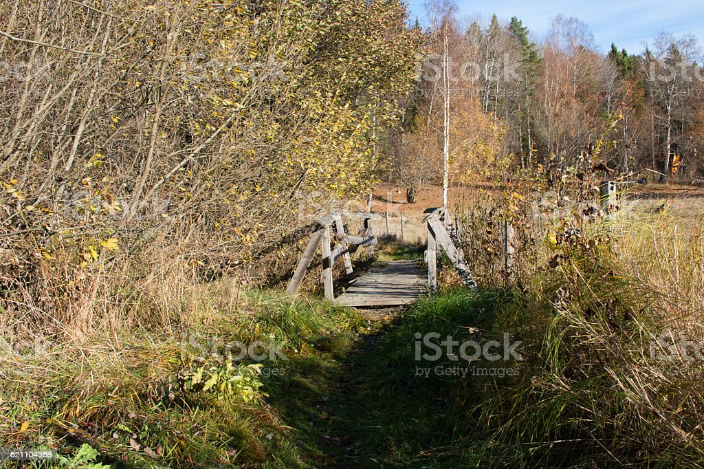 Small footbridge in an autumn landscape stock photo