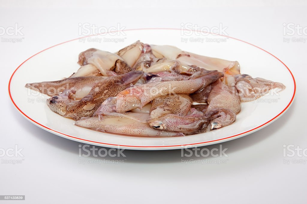 Small freshly squids stock photo