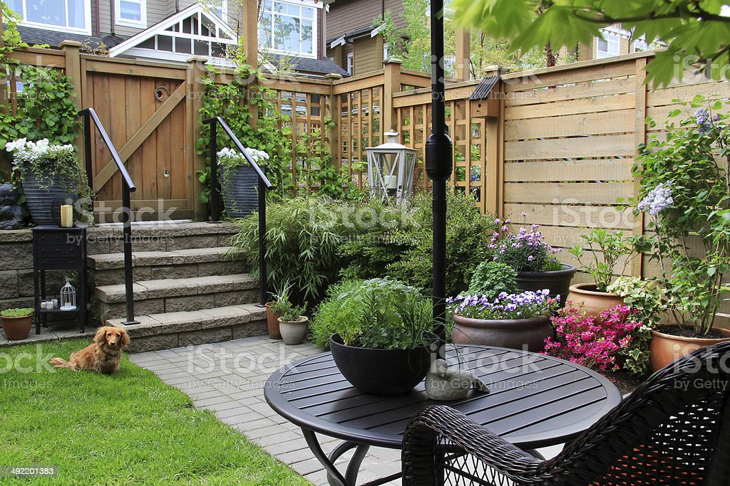 Small garden stock photo