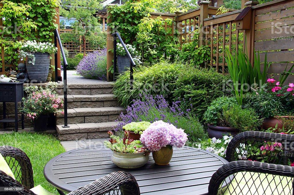 Small garden stock photo
