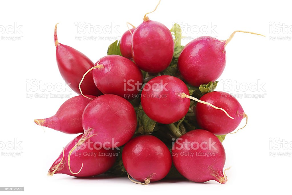 Small garden radish. royalty-free stock photo