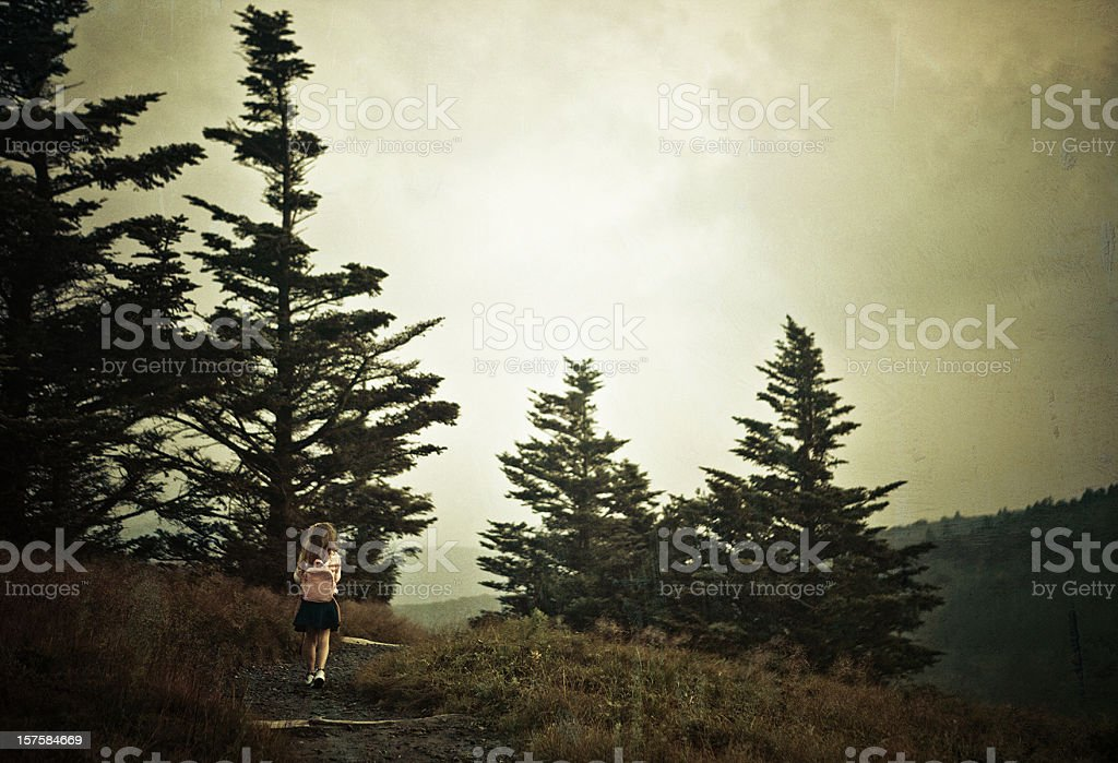 small girl at Roan Mountain State Park stock photo