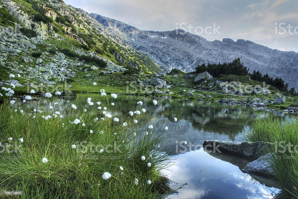 Small glacial lake in Rila royalty-free stock photo