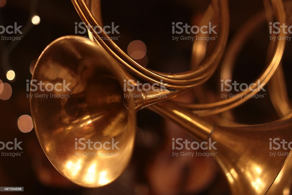 Small golden horn stock photo