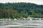 Small harbor in Pacific Northwest