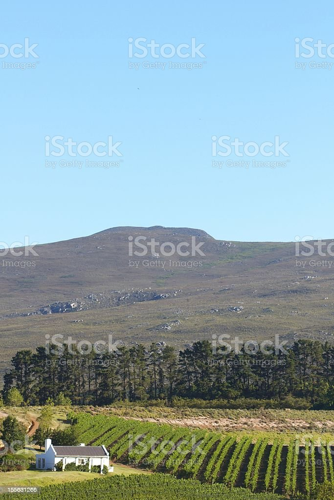Small House, Vineyard, Mountains and Sky. stock photo