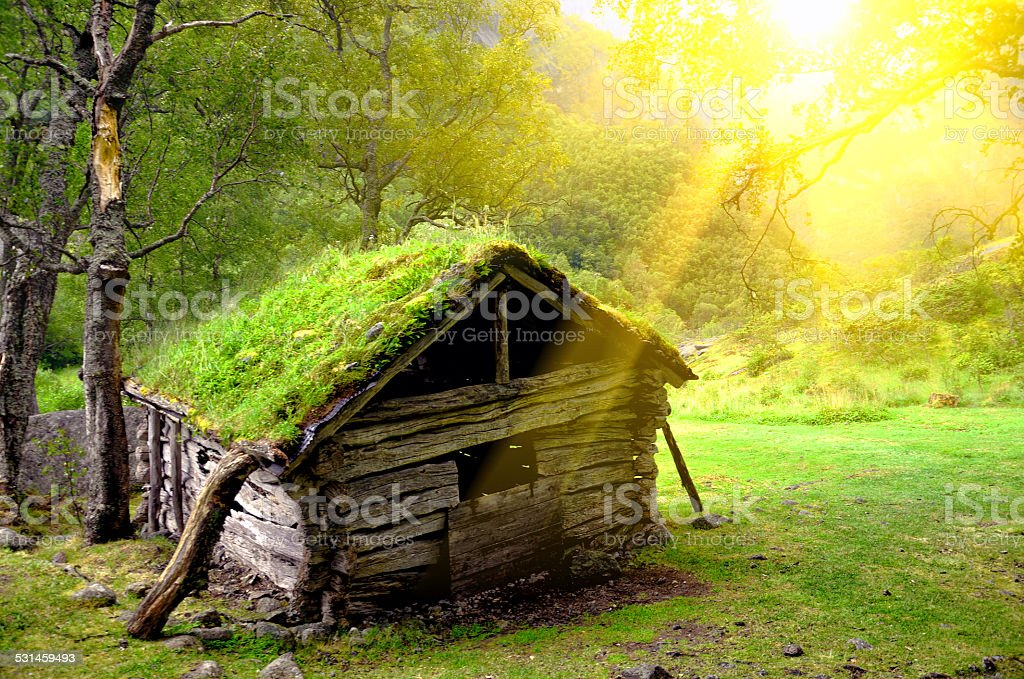Small Hut in forest stock photo