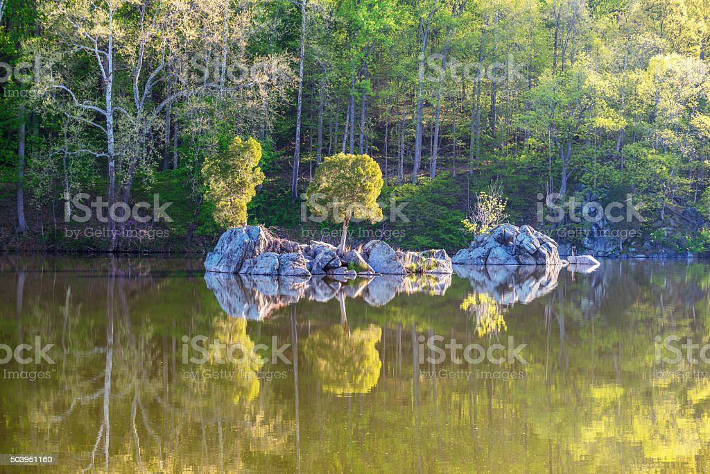 Small Island and Trees in C&O Canal National Historic Park royalty-free stock photo