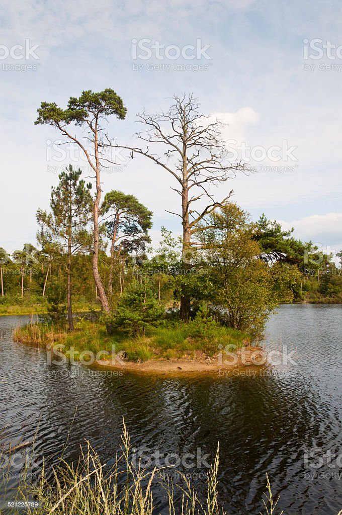 Small island in a Dutch lake stock photo