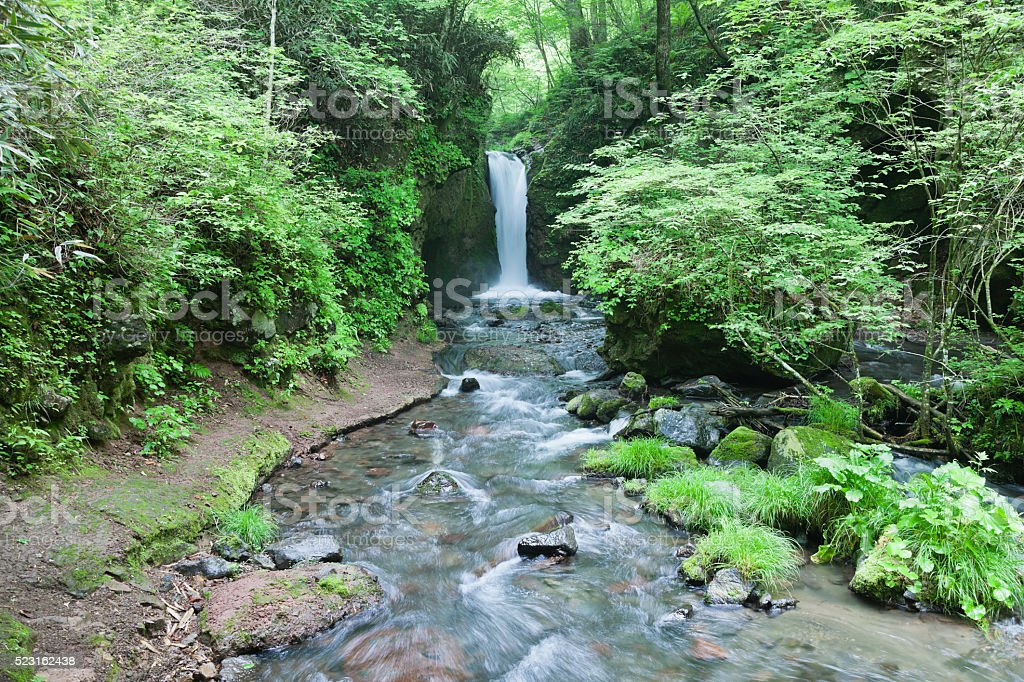 Small Japanese Waterfall in the Forest stock photo