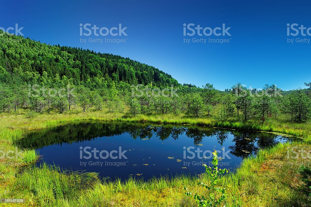small lake in the mountains royalty-free stock photo