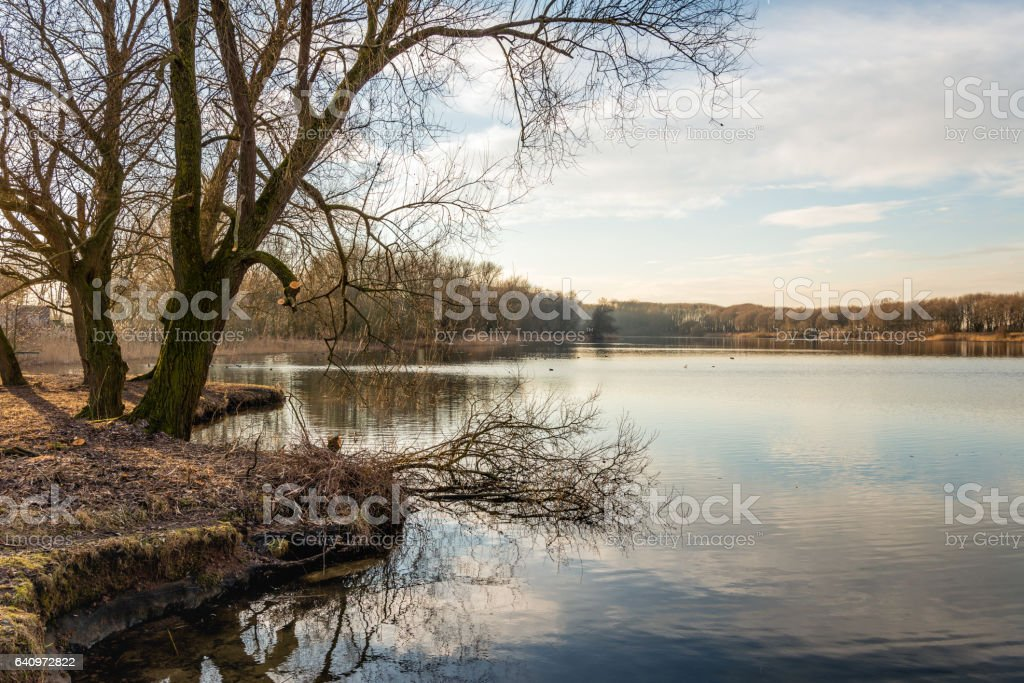 Small lake on a windless day in the winter season stock photo