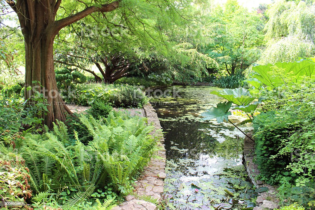 Small man-made stream leading to waterfall / pond, water gardens image stock photo