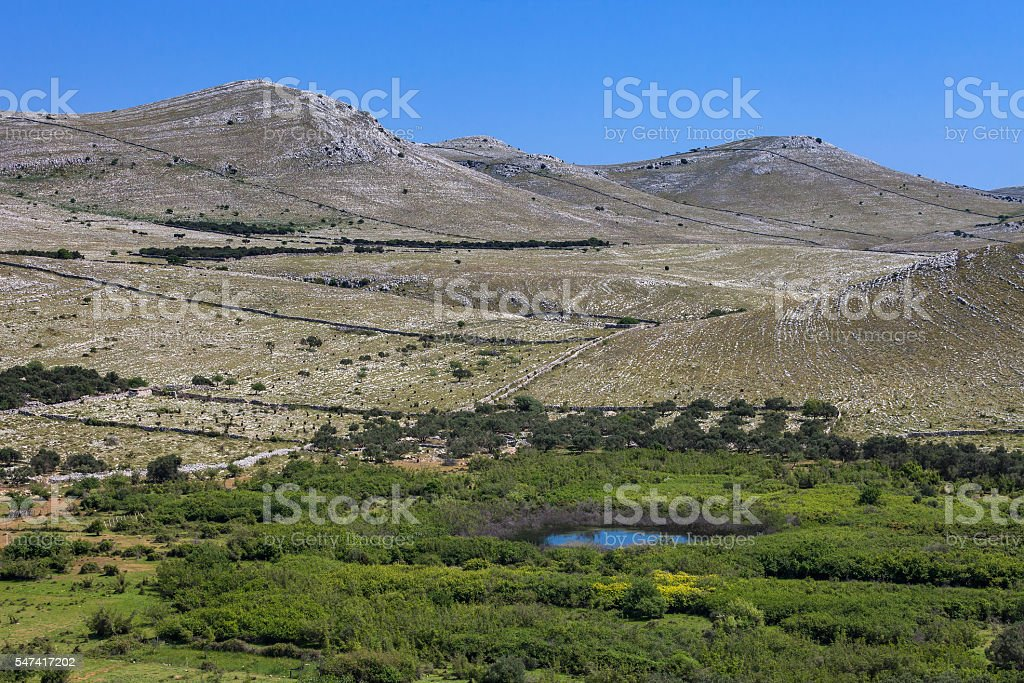 Small oasis on the Kornati Islands stock photo