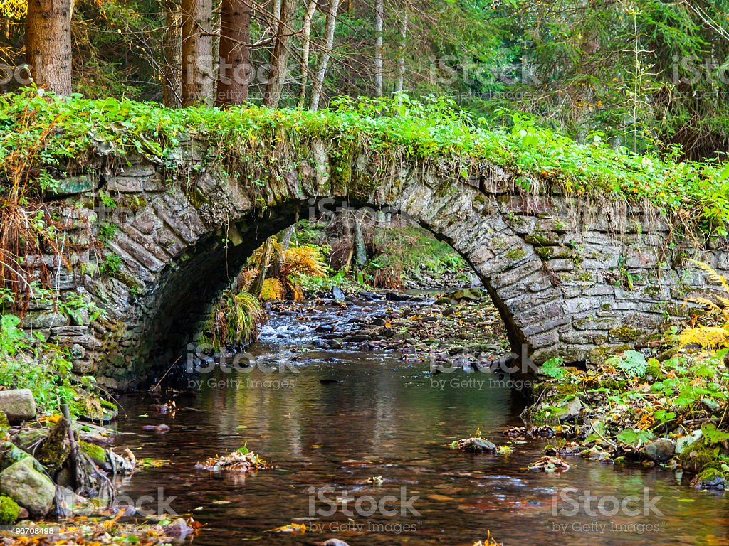 Small old stone bridge in a forest stock photo
