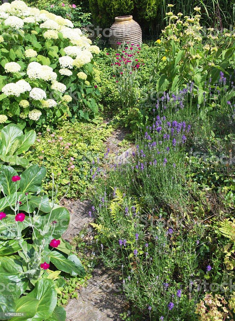 Small path  through the garden stock photo