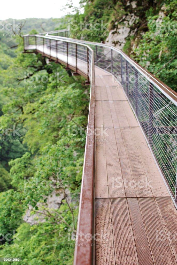 A small pedestrian bridge over the precipice stock photo