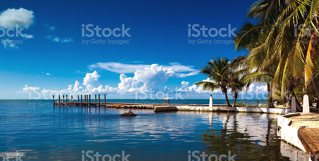 small pier and palm trees stock photo