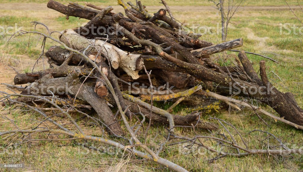 A small pile of firewood stacked stock photo