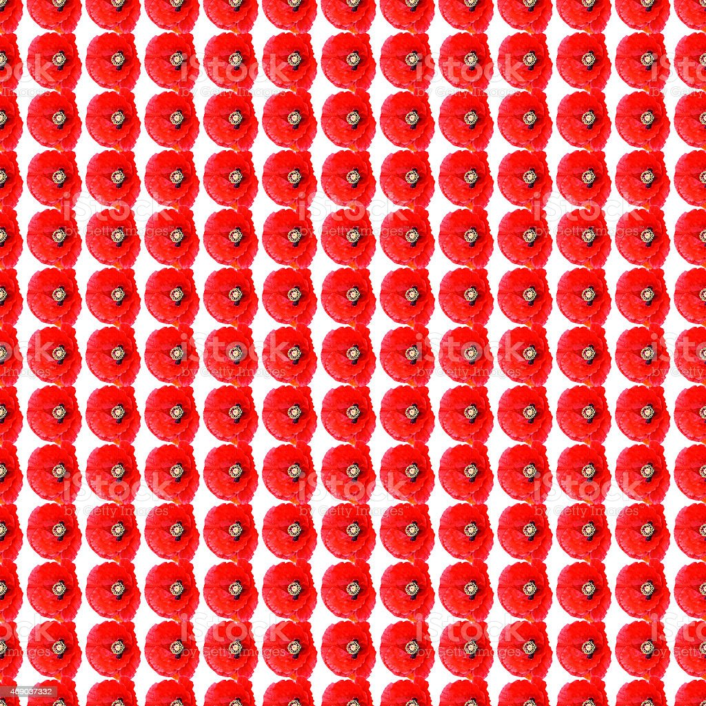 Small poppies in a row seamless background vector art illustration