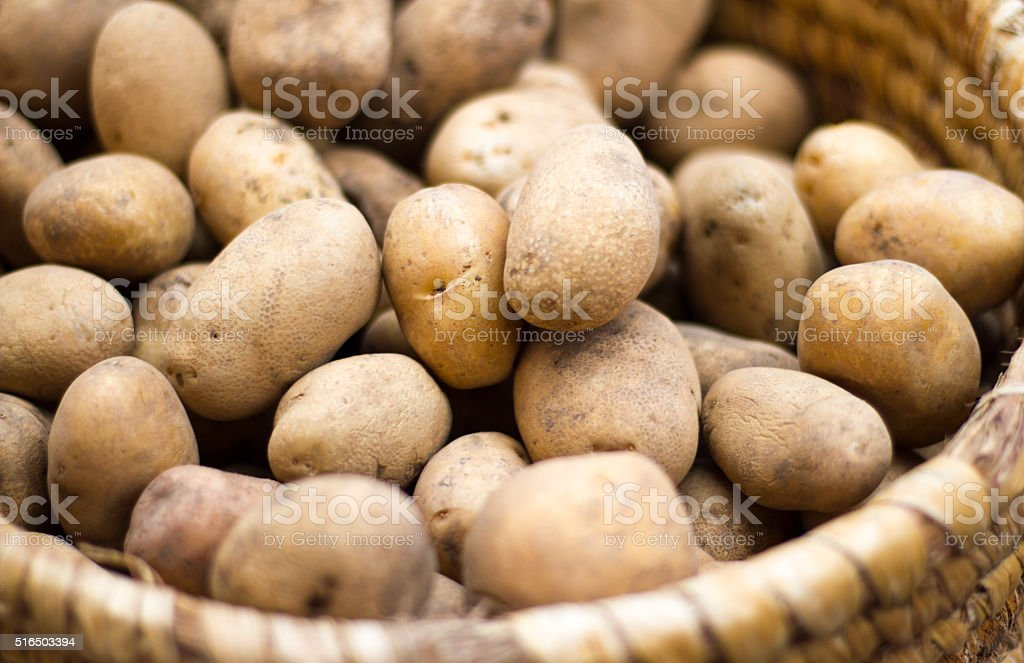 Small Potatoes in Basket at Farmer's Market (Close-Up) stock photo