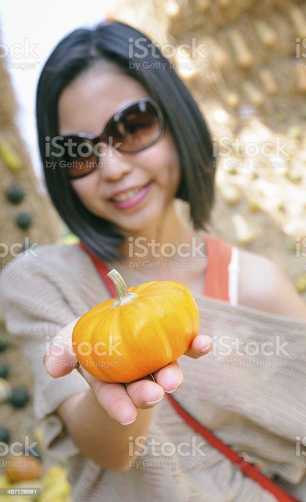 Small pumpkin in a hand stock photo