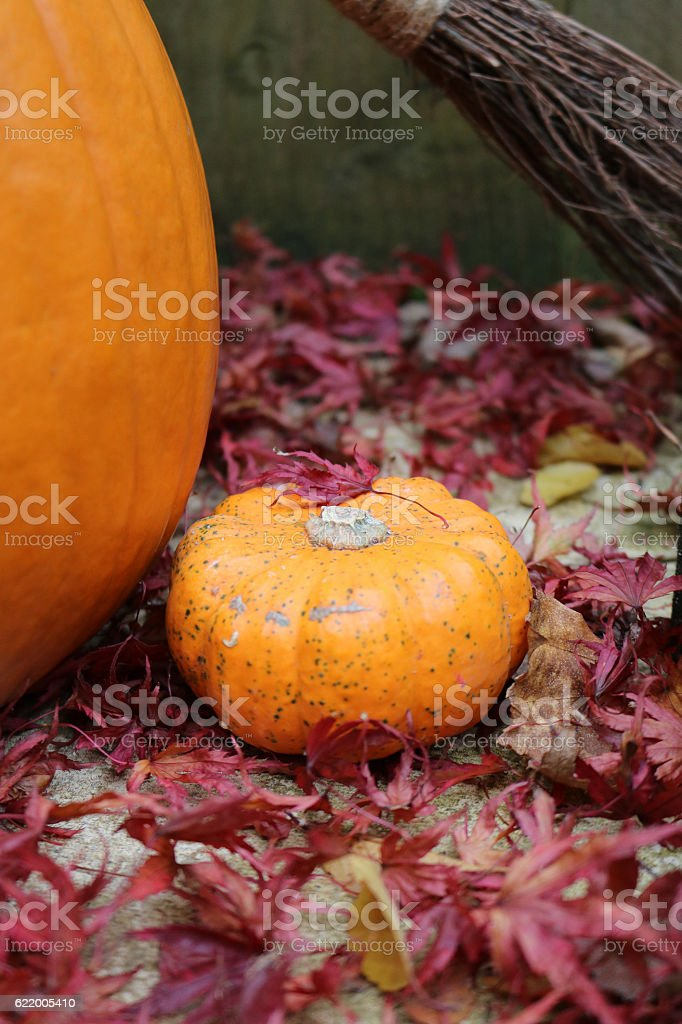 Small pumpkin next to large pumpkin with broomstick stock photo