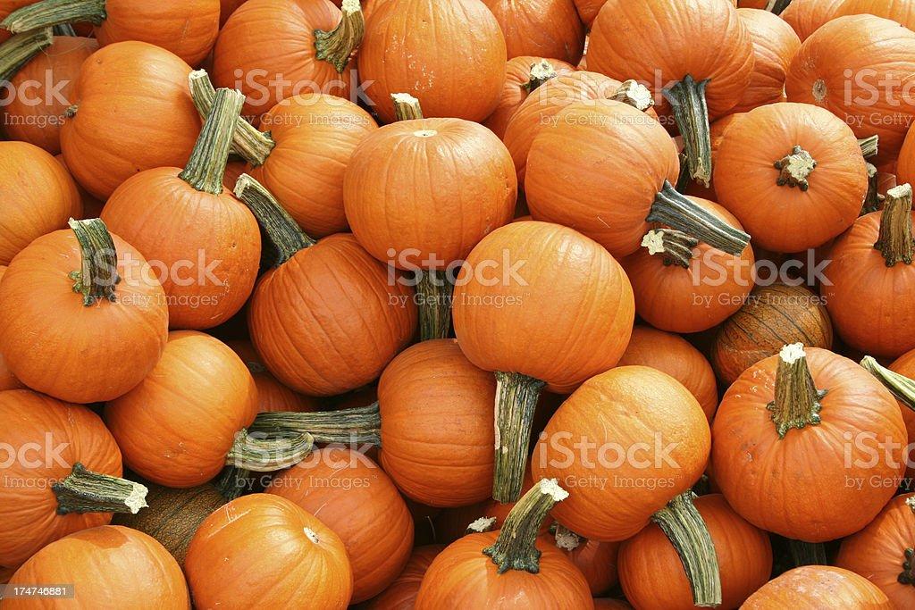 small pumpkins stock photo