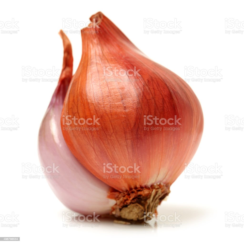 Small red onion stock photo