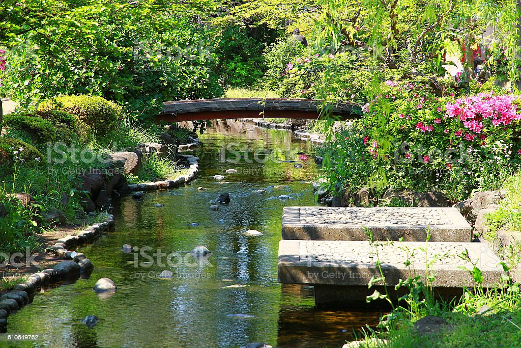Small river and bridge and flower foto de stock libre de derechos