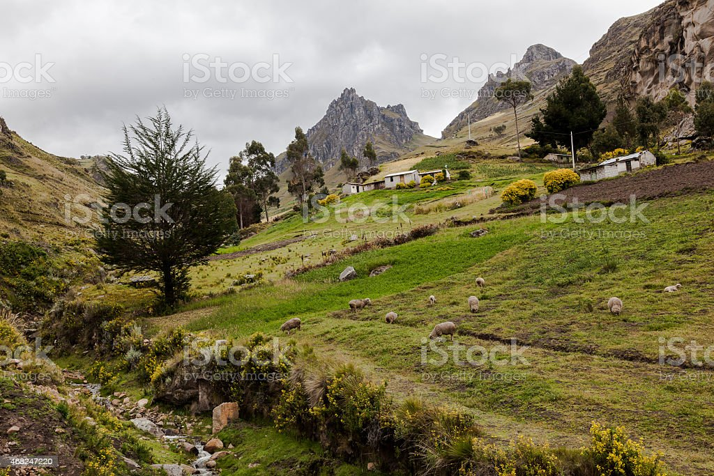 Small river and hillside farms near Zumbahua stock photo