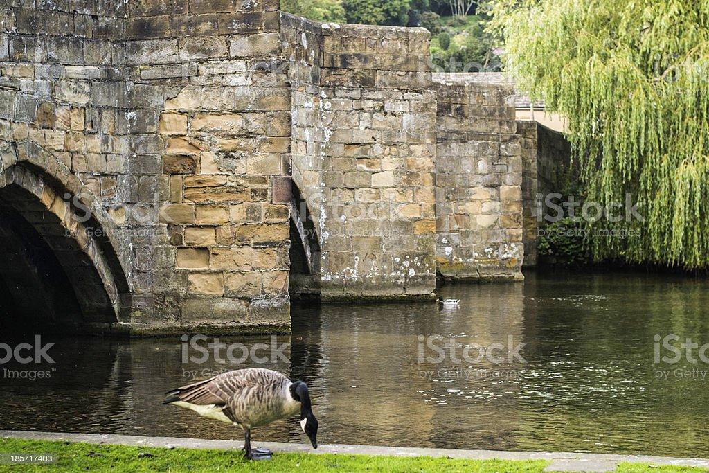 Small river bridge stock photo